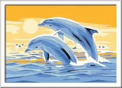 Springende dolfijn - image 2 - Click to Zoom