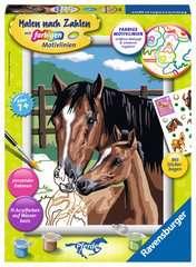 Pferd mit Fohlen - Bild 1 - Klicken zum Vergößern