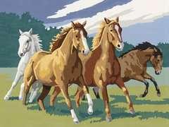 Numéro d'art - grand - Chevaux sauvages - Image 2 - Cliquer pour agrandir