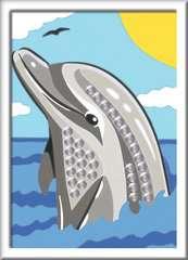 Delfin - Bild 2 - Klicken zum Vergößern