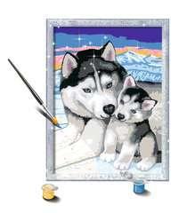 Husky Kuss - Bild 3 - Klicken zum Vergößern