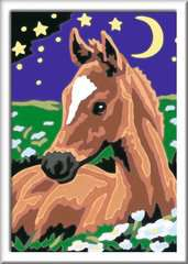Atelier Pferde - Bild 4 - Klicken zum Vergößern