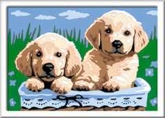Numéro d'art - petit - Adorables chiots - Image 2 - Cliquer pour agrandir