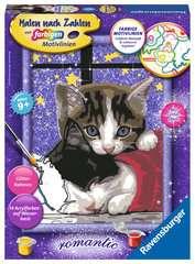 Kuschelnde Kätzchen - Bild 1 - Klicken zum Vergößern