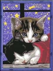 Kuschelnde Kätzchen - Bild 2 - Klicken zum Vergößern