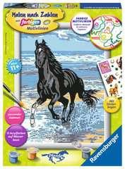 Pferd am Strand - Bild 1 - Klicken zum Vergößern
