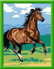Numéro d'art - moyen - Etalon chocolat au galop - Image 2 - Cliquer pour agrandir