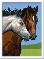 Paardenvriendschap - image 2 - Click to Zoom