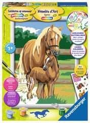 Paardenliefde - image 1 - Click to Zoom