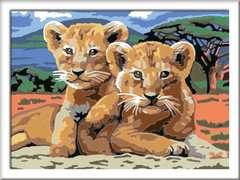 Kleine Löwenbabys - Bild 2 - Klicken zum Vergößern