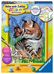Katze mit Schmetterling - Bild 1 - Klicken zum Vergößern