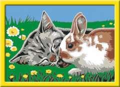 Numéro d'art - petit - Chaton et son compagnon le lapin - Image 2 - Cliquer pour agrandir