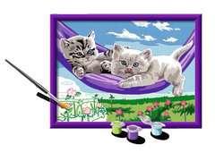 Numéro d'art - moyen - Chaton dans le hamac - Image 3 - Cliquer pour agrandir