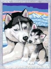 Numéro d'art - moyen - Doux bisous de Husky - Image 2 - Cliquer pour agrandir