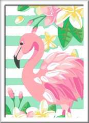 Flamingo - image 2 - Click to Zoom