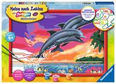 Welt der Delfine - Bild 1 - Klicken zum Vergößern