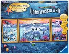 Farbenfrohe Unterwasserwelt - Bild 1 - Klicken zum Vergößern