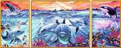Farbenfrohe Unterwasserwelt - Bild 3 - Klicken zum Vergößern