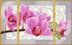 Wilde Orchidee - Bild 2 - Klicken zum Vergößern