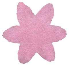 Schmetterling - Bild 9 - Klicken zum Vergößern