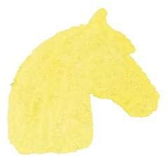 Pferd - Bild 7 - Klicken zum Vergößern