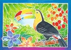 Tukan - Bild 2 - Klicken zum Vergößern
