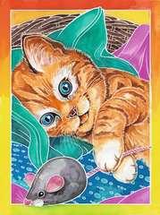 Kätzchen - Bild 4 - Klicken zum Vergößern