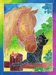 Pferdefreunde - Bild 2 - Klicken zum Vergößern