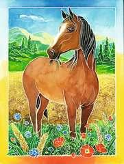 Pferdefreunde - Bild 4 - Klicken zum Vergößern