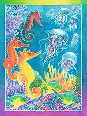 Bunte Unterwasserwelt - Bild 2 - Klicken zum Vergößern