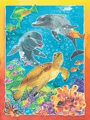 Bunte Unterwasserwelt - Bild 3 - Klicken zum Vergößern