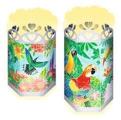 Paradiesische Vögel - Bild 2 - Klicken zum Vergößern