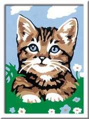 Numéro d'art - mini - Chaton tigré étonné - Image 2 - Cliquer pour agrandir