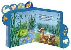 Abends, wenn kleine Tiere schlafen gehen - Bild 3 - Klicken zum Vergößern