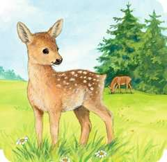 Meine liebsten Tierbabys Baby und Kleinkind;Bücher - Bild 5 - Ravensburger