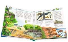 Alles über Reptilien - Bild 5 - Klicken zum Vergößern