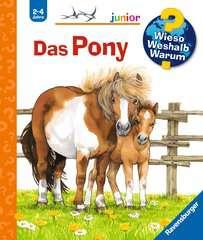 Das Pony - Bild 1 - Klicken zum Vergößern