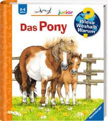 Why? Why? Why? Junior (Vol. 20): The Pony - image 2 - Click to Zoom