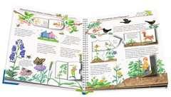 Unser Garten - Bild 3 - Klicken zum Vergößern