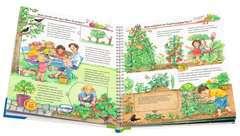 Unser Garten - Bild 4 - Klicken zum Vergößern