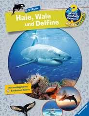 Haie, Wale und Delfine - Bild 1 - Klicken zum Vergößern