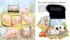 Why? Why? Why? My Audio Junior (Vol. 1): Farm Animals - image 4 - Click to Zoom