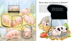 Bauernhoftiere - Bild 4 - Klicken zum Vergößern