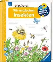Wir entdecken Insekten - Bild 2 - Klicken zum Vergößern