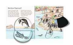 Zootiere - Bild 4 - Klicken zum Vergößern