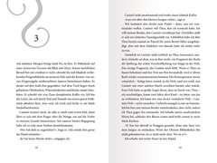 Schattendiebin, Band 3: Der letzte Verrat - Bild 4 - Klicken zum Vergößern