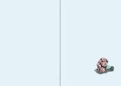 Der magische Blumenladen, Band 5: Die verzauberte Hochzeit - Bild 4 - Klicken zum Vergößern