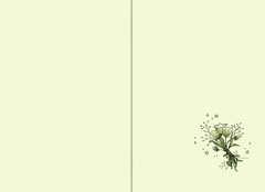 Der magische Blumenladen, Band 7: Das verhexte Turnier - Bild 4 - Klicken zum Vergößern