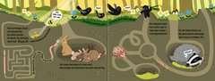 Wenn der Wald erwacht - Bild 4 - Klicken zum Vergößern