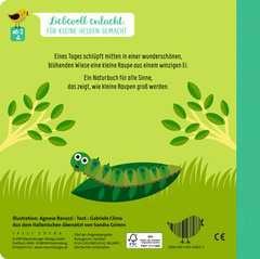 Wie kleine Tiere groß werden: Die kleine Raupe - Bild 4 - Klicken zum Vergößern